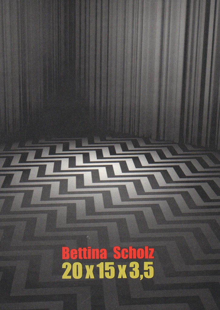 Bettina Scholz: Bettina Scholz 20x15x3,5, catalogue to accompany the exhibition at Galerie M+R Fricke, Berlin, 2012